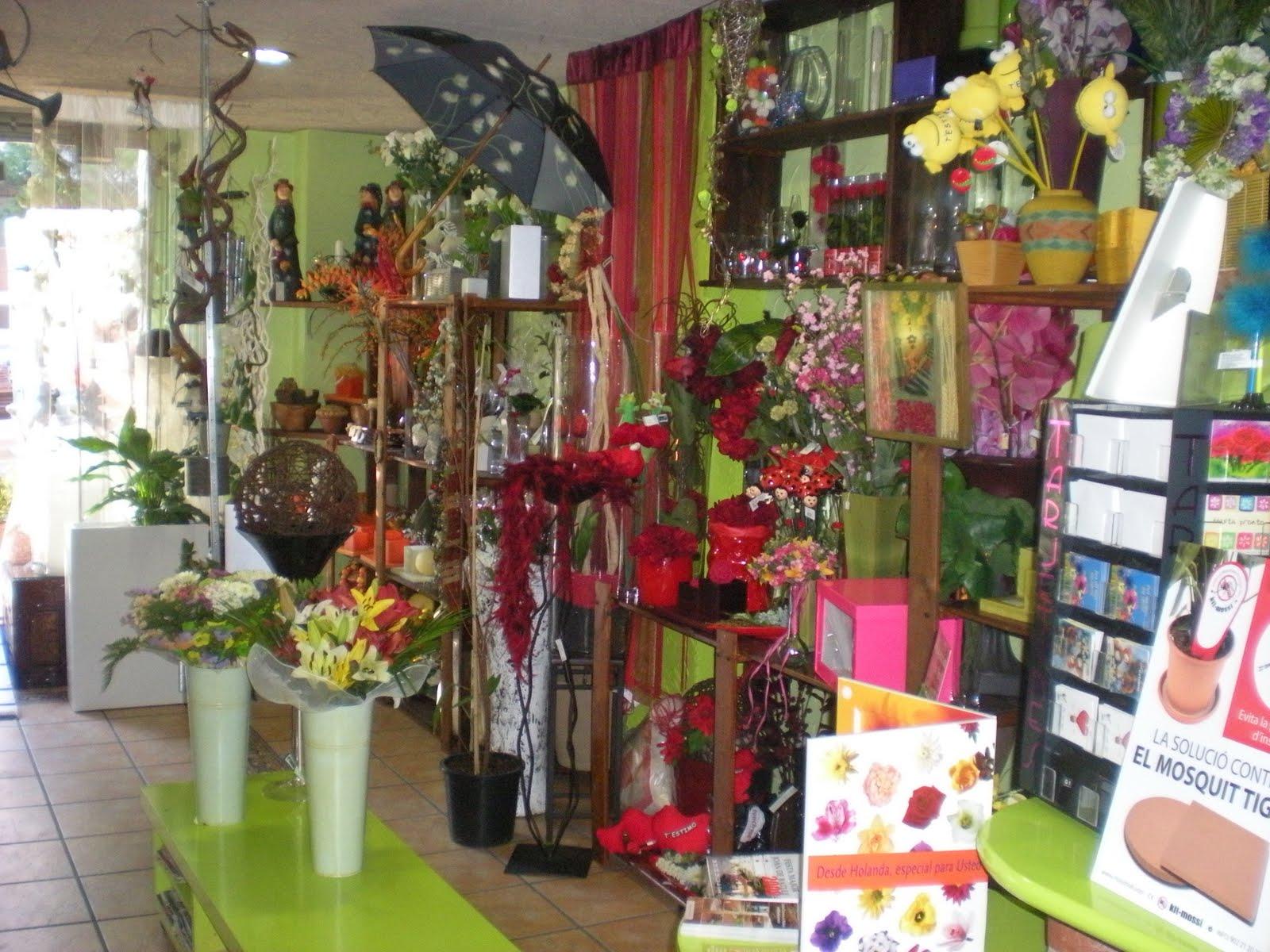 Como es la tienda de flor mas lluhi bodasnm for Que es decoracion